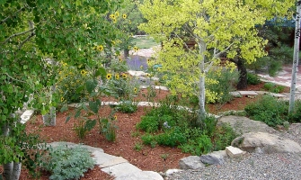 Hardscaping creates paths and planting areas