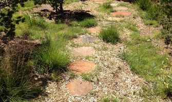 Hillside revegetation