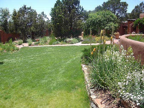 Landscaping Native Grasses : Landscaping native grass