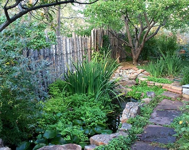 Permaculture landscaping can include water features, edible plants, fruit trees, native grasses and wildflowers and much more.