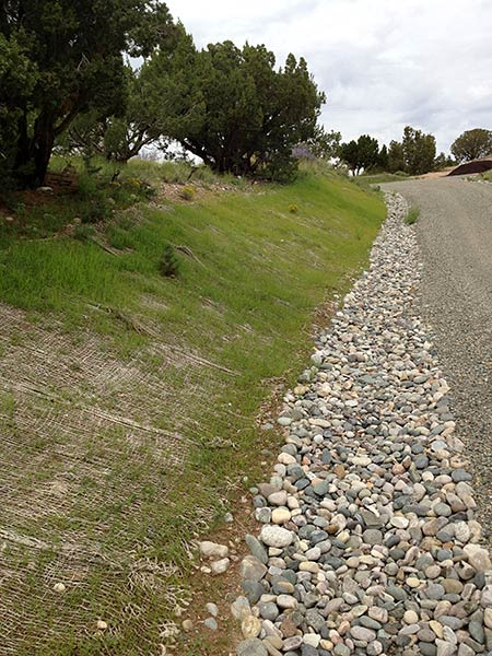 Establishing native grasses and plants, and channeling water with rock structures helps eliminate the damaging effects of erosion.