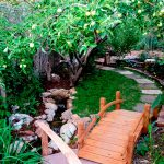 Explore a Santa Fe Permaculture Food Forest