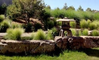 landscaping-grasses1