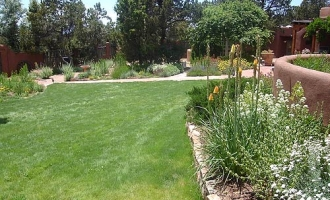 landscaping-native-grass