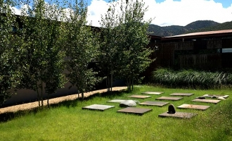 landscaping-native-grasses